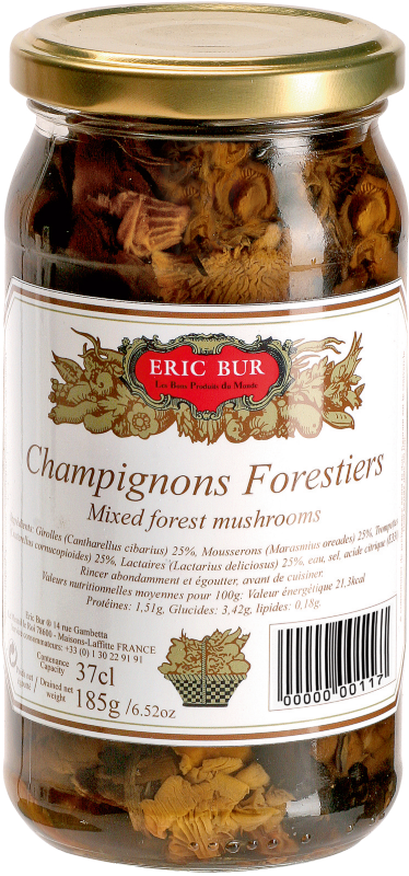 0650 - Champignons forestiers